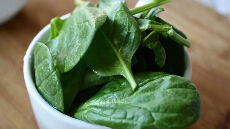 السبانج و الجرجير من الخضروات الورقية الغنية بالمغذيات، فما الفرق بين السبانخ و الجرجير؟