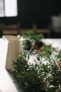 فوائد الزعتر البري وطريقة تحضير شاي الزّعتر