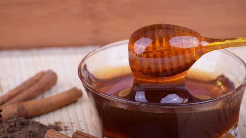 عسل الغابة السوداء مصدره وفوائده