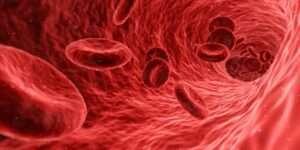 هذه اهم اسباب ارتفاع الكوليسترول عند الشباب. اكتشفها الآن.