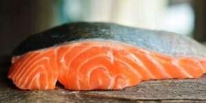 فوائد وأضرار سمك السلمون.